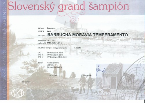 slovensky-grand-sampion.jpg